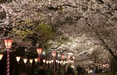 大阪城の西の丸庭園1