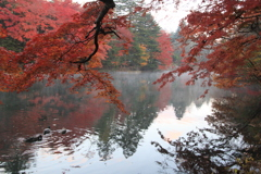 避暑地軽井沢の秋11