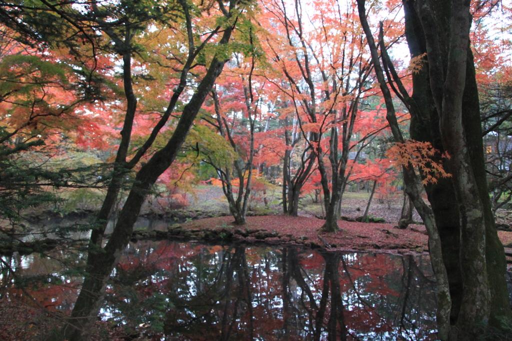 避暑地軽井沢の秋8