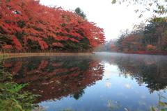 避暑地軽井沢の秋4