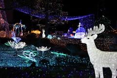 Winter illumination 2020 019