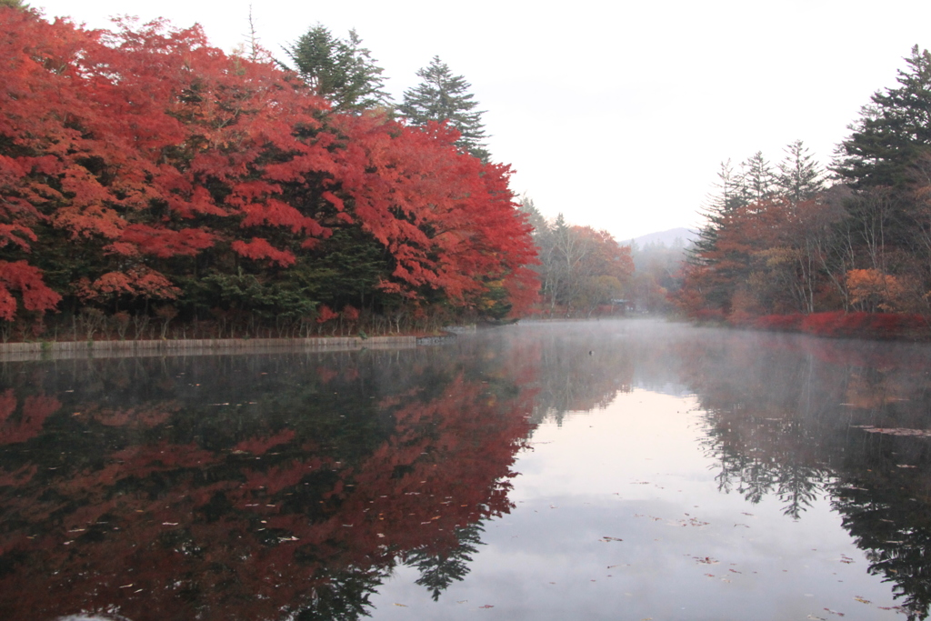 避暑地軽井沢の秋7
