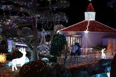 Winter illumination 2020 029