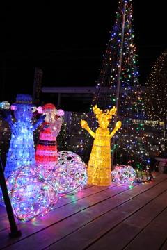 Winter illumination 2020 031