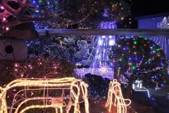 2018 クリスマス・イルミネーション18