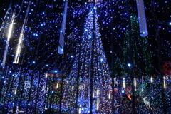 2018 クリスマス・イルミネーション15