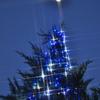 Blue magic tree  &  moon