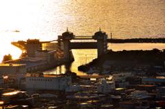 沼津港、キラキラ