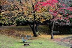 kouyono bench
