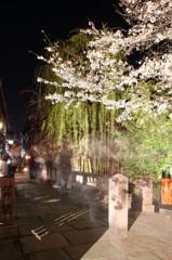 巽橋(夜)
