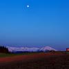 皐月の丘風景
