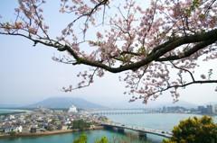 舞鶴公園からの眺め
