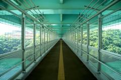 新西海橋の遊歩道