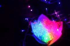 虹のオハナ