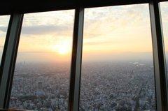 展望回廊からの眺望(その4)