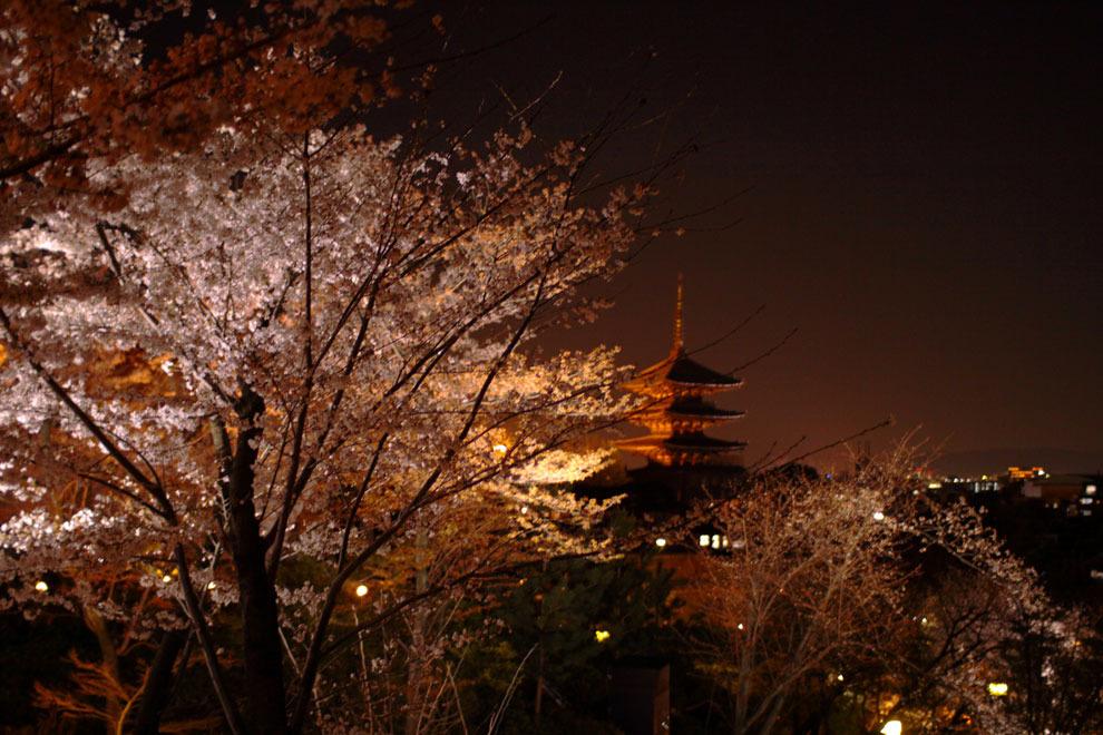 高台寺から見える風景