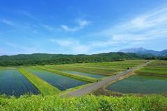 棚田と大山