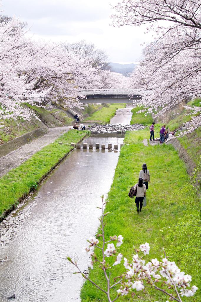 春の散策。