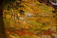 みなも秋景