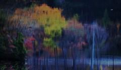 湖上のキャンバス