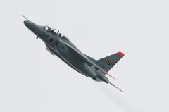 静浜基地航空祭2014 T-4