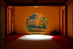 北鎌倉明月院本堂紅葉200712