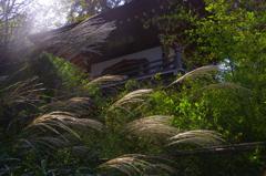 浄智寺の秋