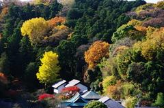 東慶寺遠望