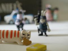 ウサビッチ只今逃走中 ~ んっ…猫と鳩サブレー?
