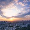 Tokyo's Sun Set