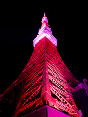 Pink ribbon in Tokyo tower