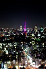 PINK TOWER 2010