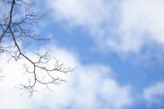 〈雪と空〉