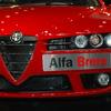 Alfa赤