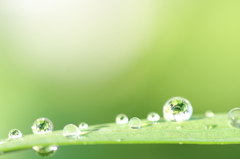 水玉の中の世界