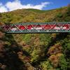 箱根登山鉄道 出山の鉄橋