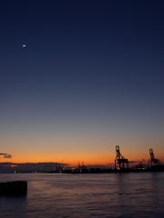 夜の港に映る工場