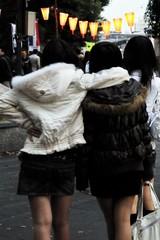 photo137384