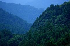梼原の山々