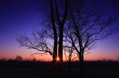 大地の夜明け