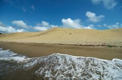 砂丘を海側から