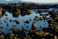 真鶴の岩場