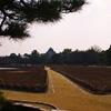 あそこが岡山城