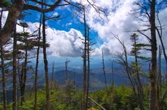 蓼科山からの眺め