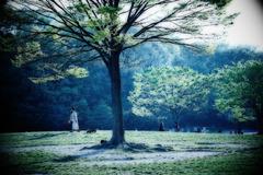 春の公園Ⅱ