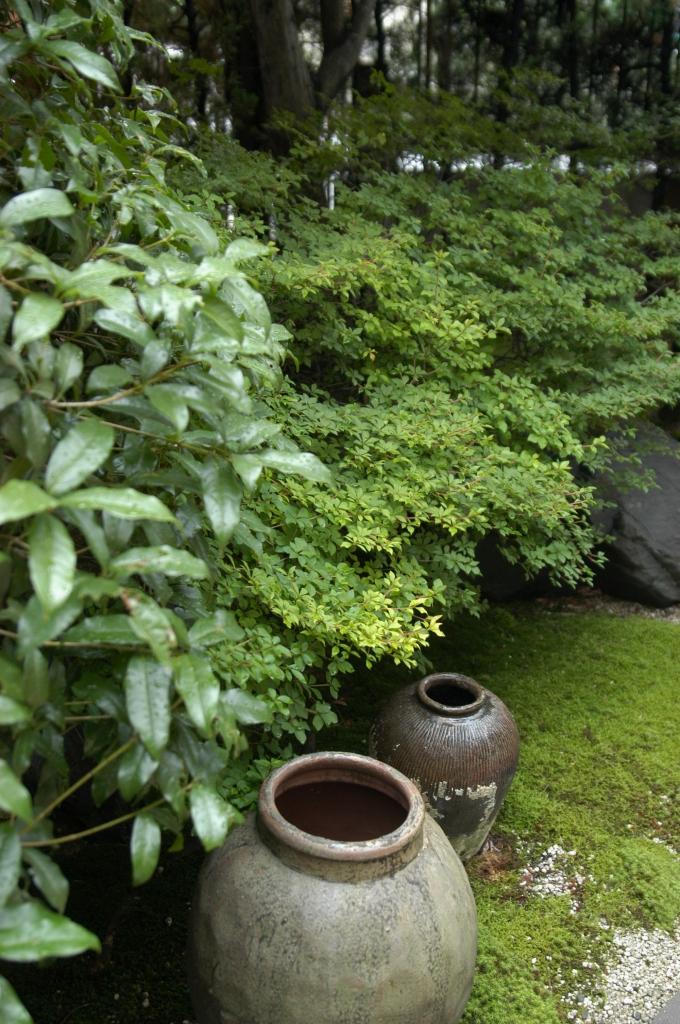 雨の庭04