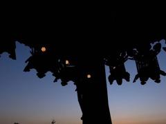 二月堂から見た夕景1