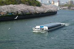 大川の春 2009 Ⅲ