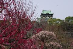 早春 大阪城(弐)