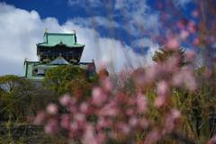 早春 大阪城(壱)